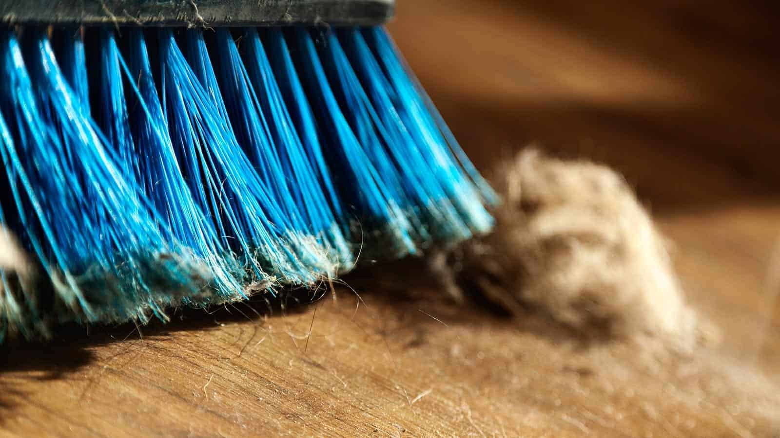 Menage Total Dust Cleaning Services