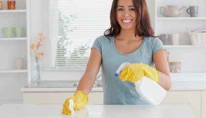 Domestic Cleaners Laval