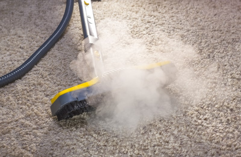 Carpet Cleaning - steam cleaning services