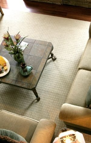 Menage Total West Island Cleaning services